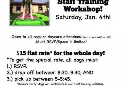 2014 Daycare Party & Staff Training Workshop
