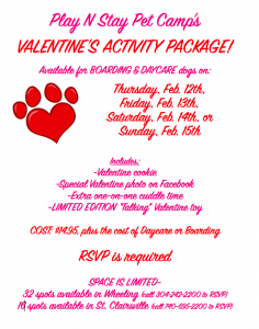 Dog Daycare Party Valentine's Day Puppy Love