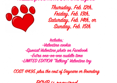 2014 Valentine's Party for Dogs