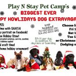 Dog Santa Christmas Party Boarding
