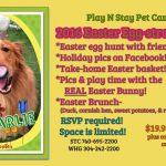 Party Easter Dog Daycare