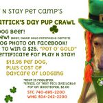Dog Daycare Party St. Patrick's Pup Crawl
