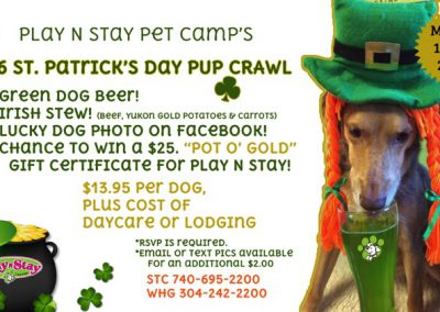 2016 St. Patrick's Day Pup Crawl