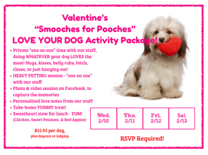 Valentine Party Dog Daycare