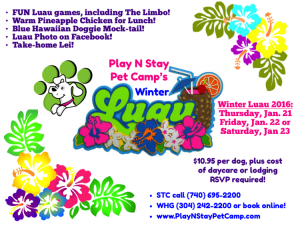 Dog Party Luau Daycare