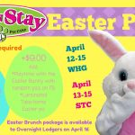 dog daycare boarding fun easter party wheeling st. clairsville