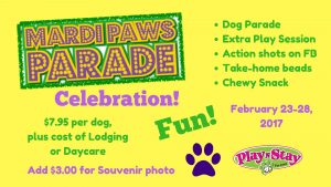 dog daycare boarding fun mardi paws party