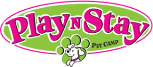 Play N Stay Pet Camp logo Fun Daycare Lodging