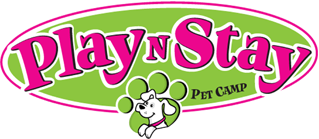 Play N Stay Pet Camp | FUN Dog Boarding & Daycare, Overnight Lodging & Extended Stays | Puppy Training & Puppy School | Wheeling, WV + St. Clairsville, OH